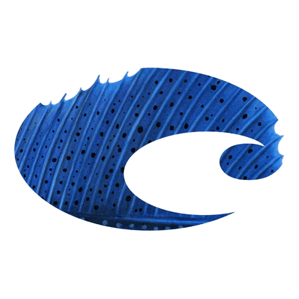 Costa Stickers - Costa Sailfish Sm - Blue