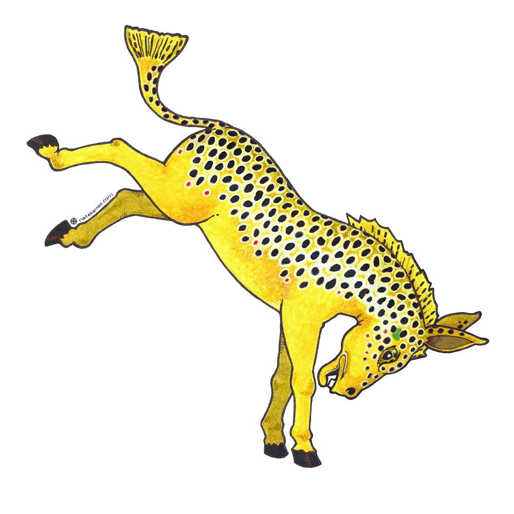 Donkey Brown Trout Decal
