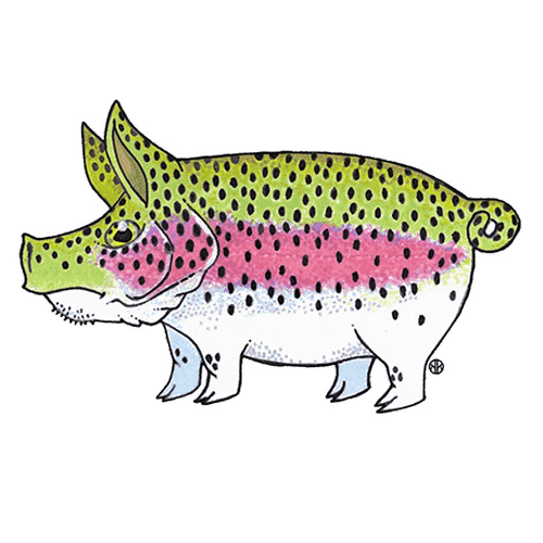 Nate Karnes Pig Rainbow Trout Sticker