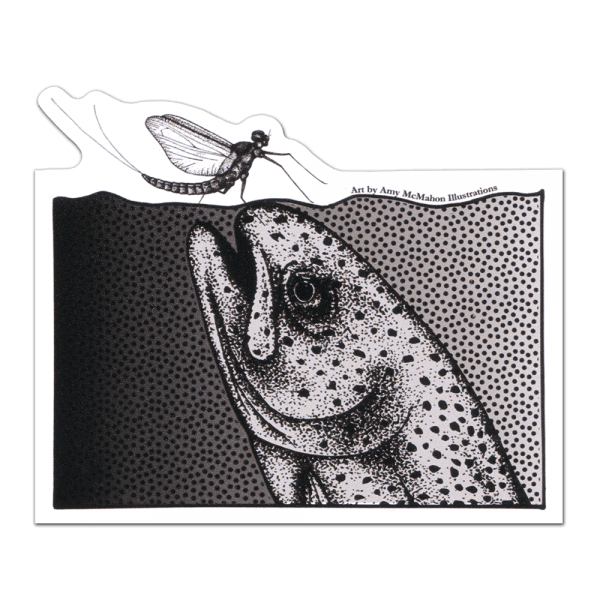 Amy McMahon Rising Rainbow Trout Decal