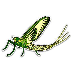 Fly Slaps Ornamented Green Drake