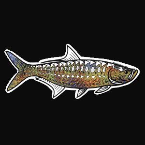Pesca Muerta Jay Talbot Tarpon Decal