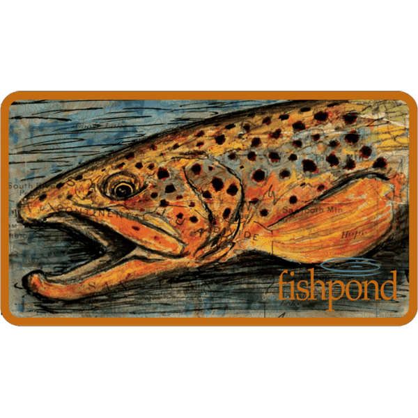Fishpond Brown Trout Sticker
