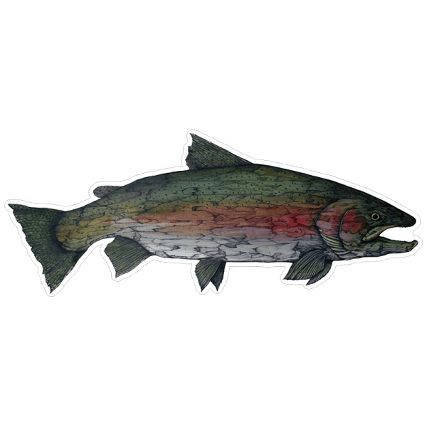 Jake Keeler Steelhead Buck Sticker
