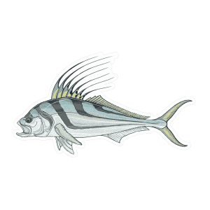 Casey Underwood Roosterfish Sticker