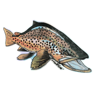 Matthew Stockton Brown Trout Holographic Sticker