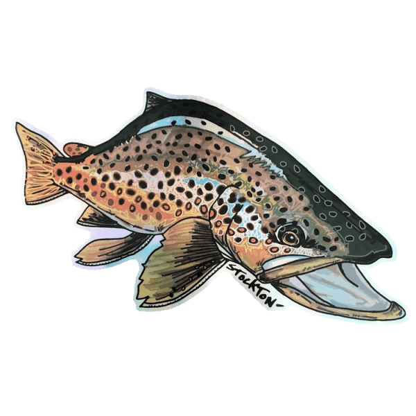 Matthew Stockton Brown Trout Holographic Sticker