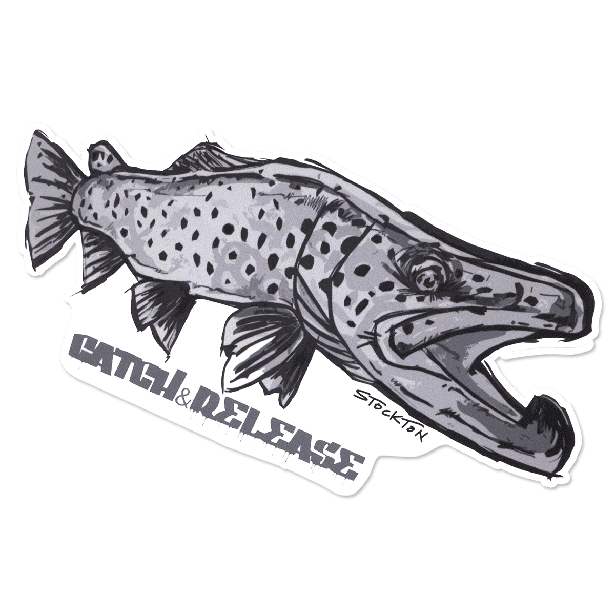 Brown Trout Catch /& Release Decal Fly Fishing Sticker