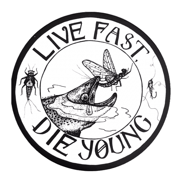 Amy McMahon Live Fast Die Young Sticker