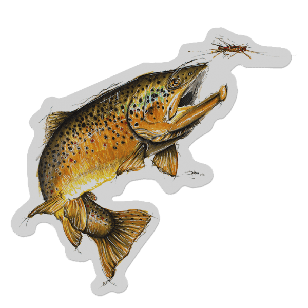 Cory Street Leaping Brown Trout Decal