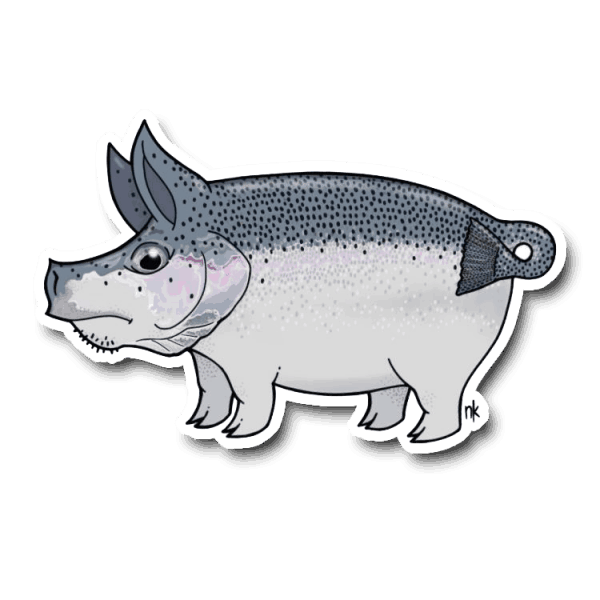 Nate Karnes Pig Steelhead Sticker