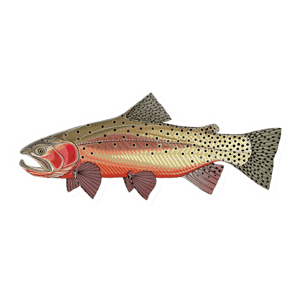 Casey Underwood Greenback Cutthroat Sticker