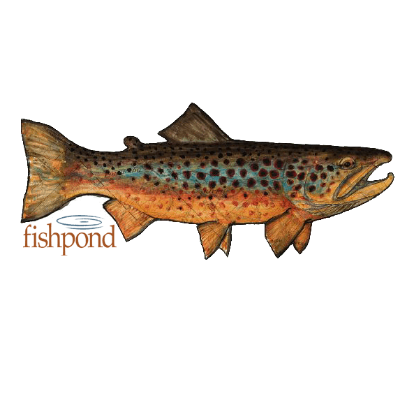 Fishpond Local Brown Trout Decal
