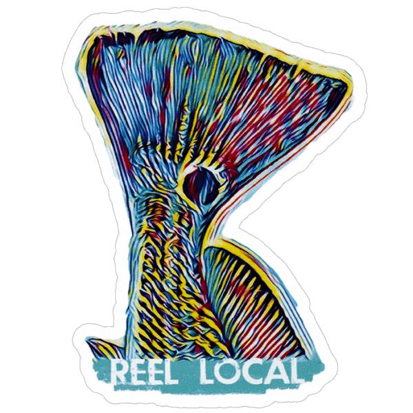 David Danforth Reellocal Neon Redfish Tail Decal